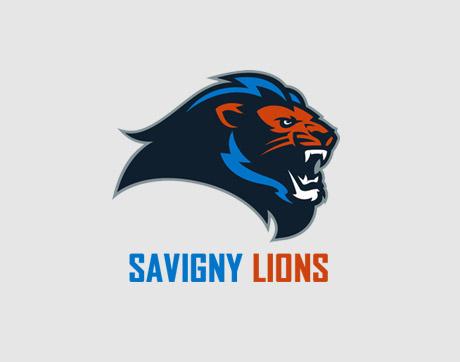 Les lions de Savigny-sur-Orge