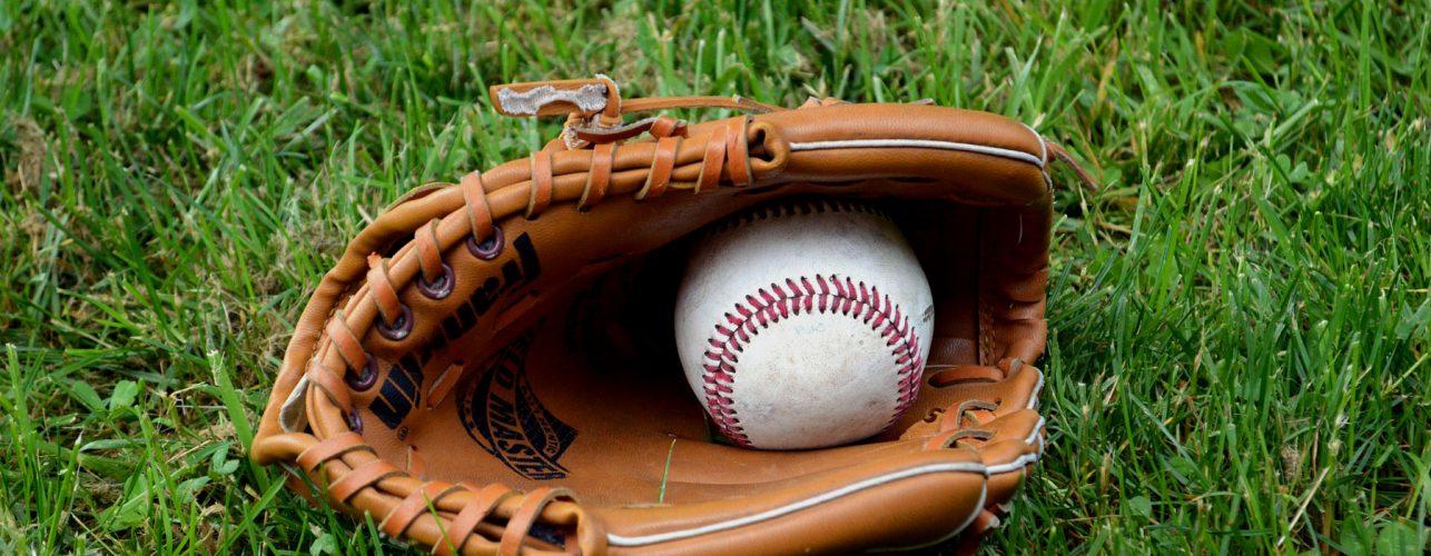 Comité de baseball, softball et cricket de l'Essonne (91) - Les clubs