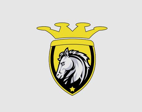 Sultans Cricket Club de Juvisy-sur-Orge